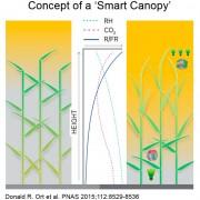 smart_canopy